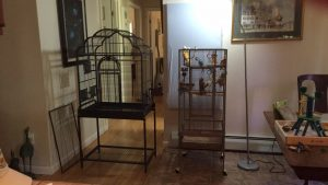 prevue park plaza bird cage